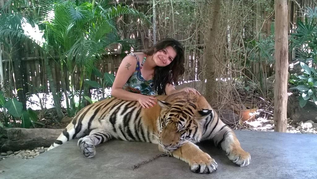 With the Majestic one in Namuang Safari Park , Koh Samui