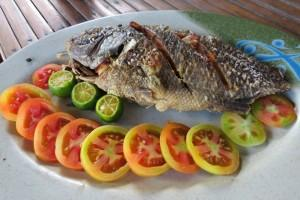 BBQ Fish in Island hopping tours
