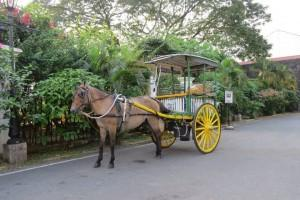 horse carriages in Old Town
