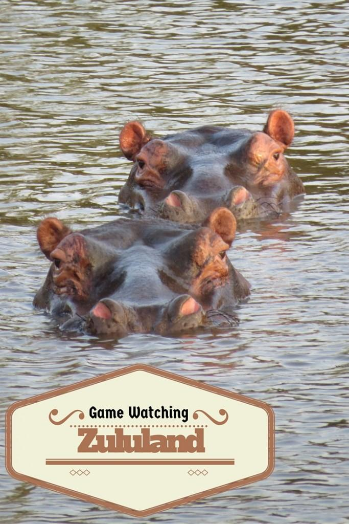 Game Watching in Zululand Rhino Reserve