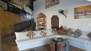 decor of zebra hills