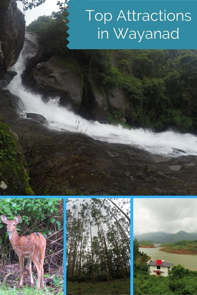 Top attractions in Wayanad