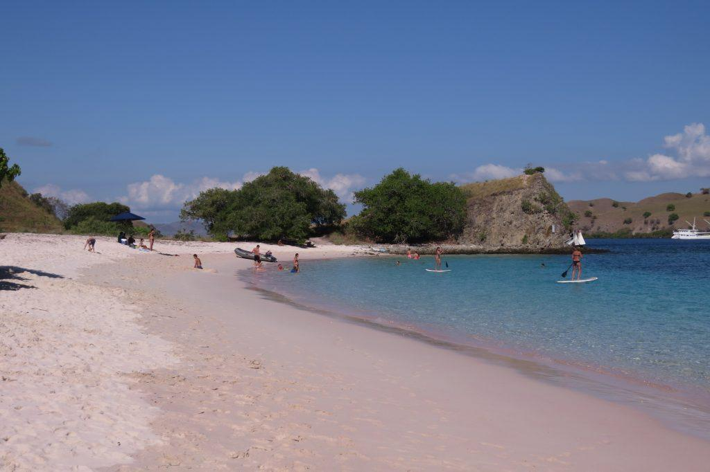 Pink beach with the tinted pink shoreline