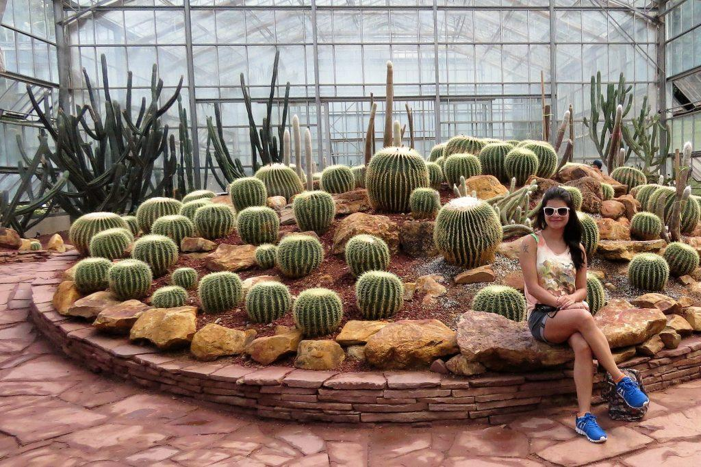 At the lovely Cactus display in Queen Sirikit