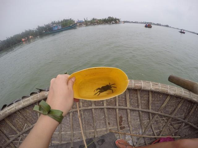 catching crab