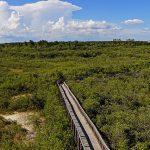 St. Petersburg, FL: Brief City Guide