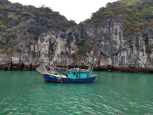Choosing halong bay cruise