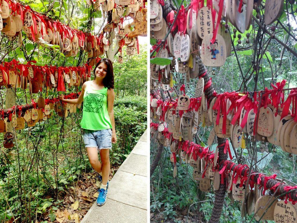 moxing summit baiyun