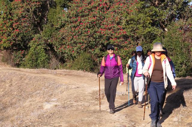 Confident trekkers heading back to base