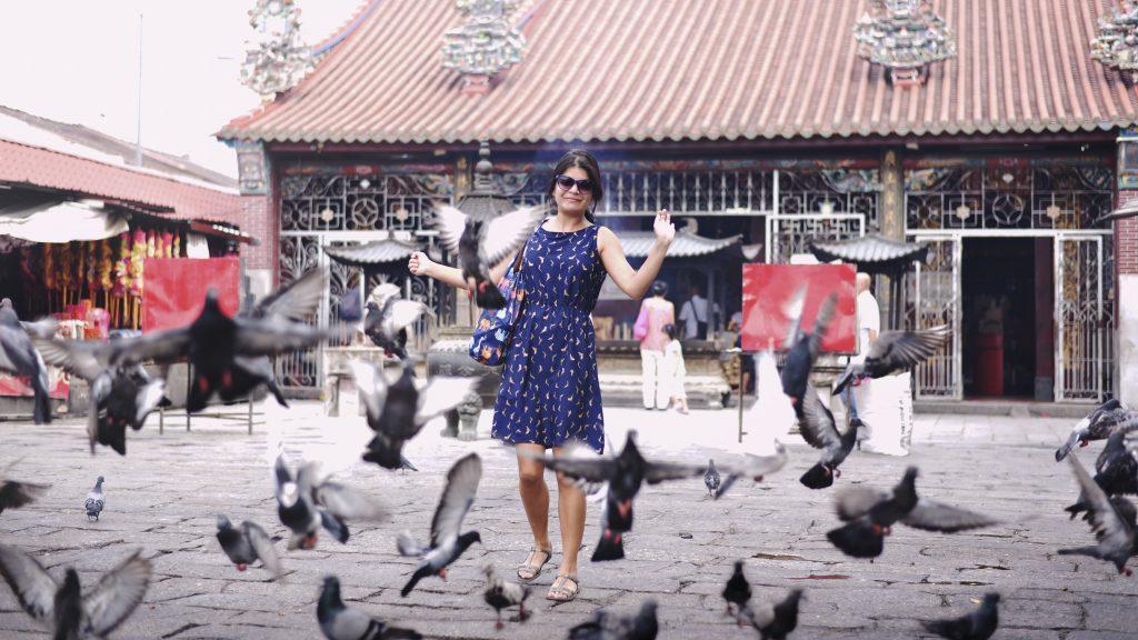 pigeons in georgetown