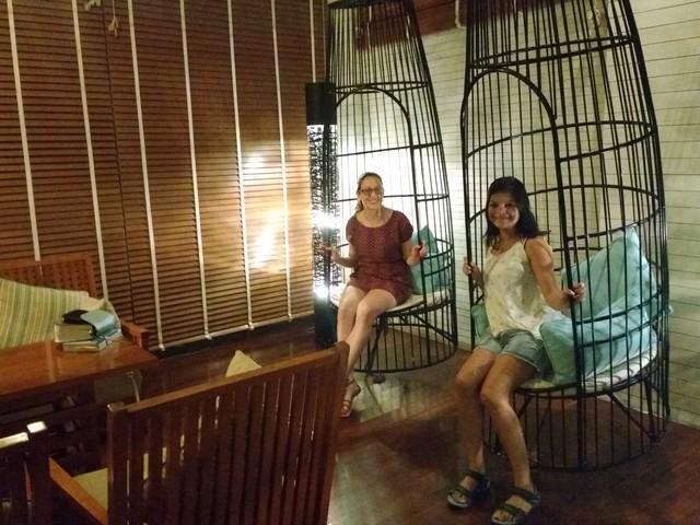 birdcage style swings