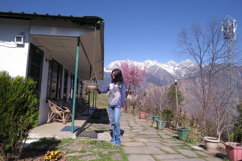 Himalayan Eco Lodge in Auli