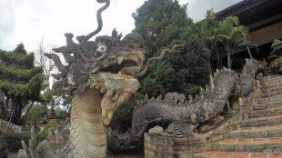 dragon dalat